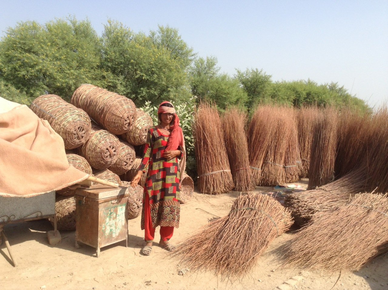 A woman weaves baskets from small branches as a source of income