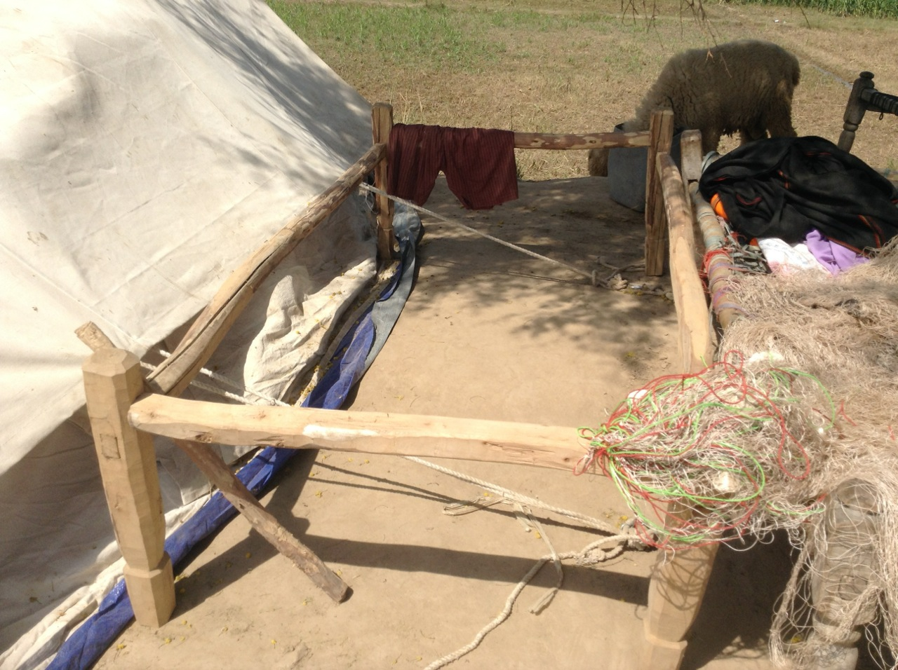 A woman makes a charpai in the camp