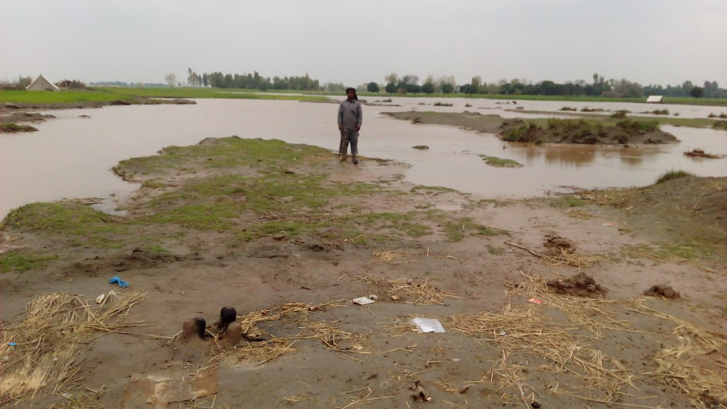 After 2014 floods in September in Multan, Kawa wali village had gone back to a place near their prevvious abode. Their land had been lost after 2014 floods. Now their present abode is alos eroded.
