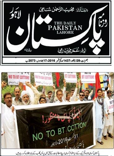 BT Cotton Pakistan Newspdf copy